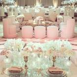 aliana events